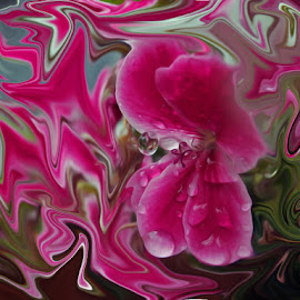 ...i kada počneš drugačije gledati, svijet oko sebe!?...... by Katica Pecigoš-Kljuković - Abstract Macro