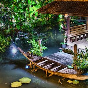 Cano Siam.jpg