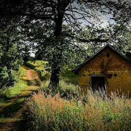 Abandoned by Nenad Borojevic Foto - Landscapes Travel ( sky, tree, grass, house, road )