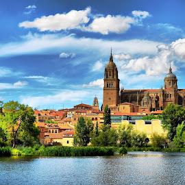 Salamanca by Francis Xavier Camilleri - Buildings & Architecture Public & Historical