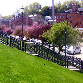 Blossoming Trees along Galena's Levee by Kathy Rose Willis - City,  Street & Park  City Parks ( galena, stairs, illinois, levee, trees, spring,  )