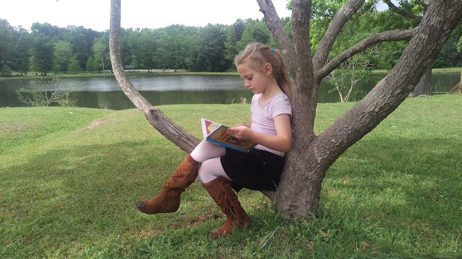 Perfect reading nook by Stefanie Curry - Babies & Children Children Candids ( girl, nature, tree, book,  )