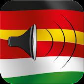 German to Hungarian talking phrasebook translator