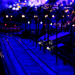 Miniature Miami by Hoang Nguyen Anh - Landscapes Travel ( night photography, miami, night, hamburg, miniature )