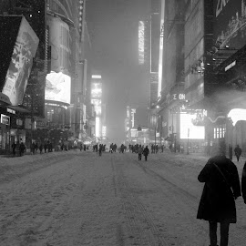 Times Square in blizzard by Ross Bolen - City,  Street & Park  Street Scenes ( times square, snow, new york city )