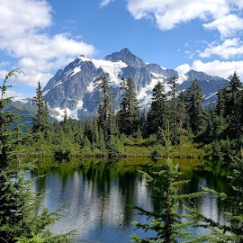 Mt Shuksan in Picture Lake by Laura Holicky - Landscapes Mountains & Hills ( alpine lakes, reflections, nature, cascade mountain range, washington )