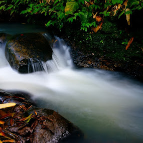 Fresh water by Theyjun Photoworks - Nature Up Close Water