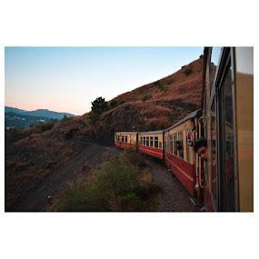 Shimla 1 by Pranab Sarkar - Transportation Railway Tracks ( candid, railway, india, toy train, train )
