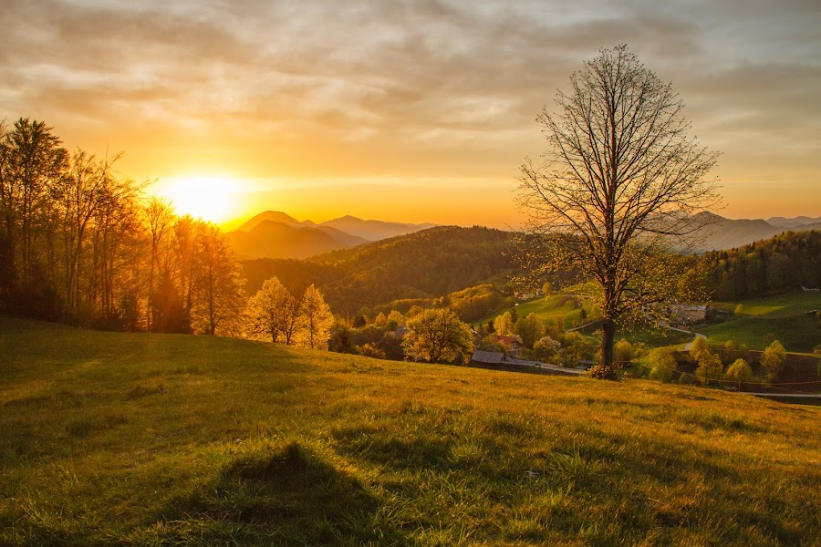 Morning with a view by Karmen Smolnikar - Landscapes Mountains & Hills ( hills, nature, sunshine, view, morning, light, sun )