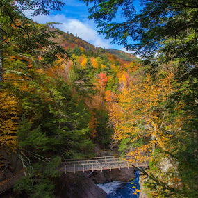 High Falls Gorge by Peter Andrusyszyn - Landscapes Forests ( high falls gorge, autumn leaves, 2015, ©pete andrusyszyn, lake placid )