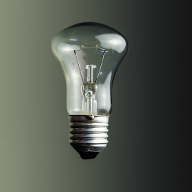 Common Light Bulb by Tahsan Kabyo - Digital Art Things ( idea, prime lens, tabletop, nikon, light bulb )
