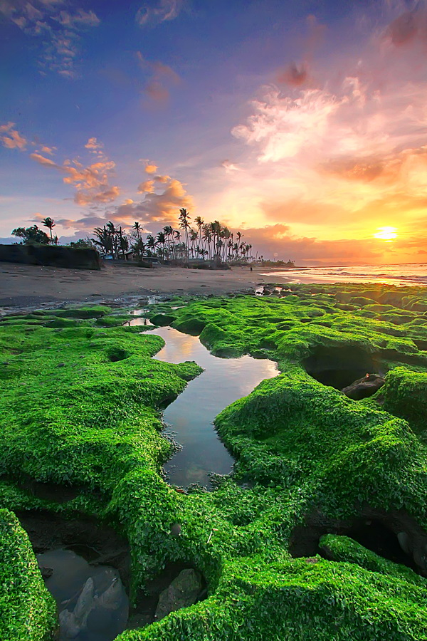 Low Tide at Manyar Beach-Bali by Agoes Antara - Landscapes Waterscapes
