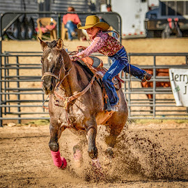 Intensity by Jim Shafer - Babies & Children Children Candids ( jim berryman-shafer, horses, jim shafer, rodeo, cowgirl, children, ranch_life, western images )