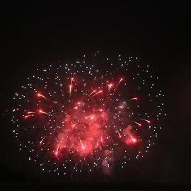 every night fire works by Jon Radtke - Public Holidays July 4th ( every night fire works )