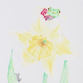 Frog and Daffodil by Jo Soule - Drawing All Drawing ( daffodil, frog, peek peeking,  )