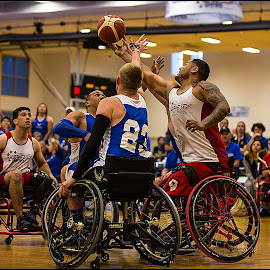 Long Reach by Elk Baiter - Sports & Fitness Basketball ( basketball, games, wounded, wheelchair, west point, wariror, sports, athlete )