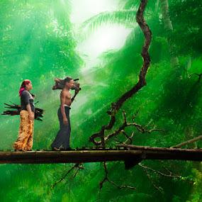 pencari kayu bakar by Don Paladino - People Family