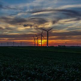 Wind Farm by Pete Bouman - Landscapes Sunsets & Sunrises ( mn, farm, wind, minnesota, ruthton, buffalo ridge, turbine, sunset, windmill )