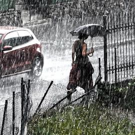 storm by Darko Kordic - City,  Street & Park  Street Scenes