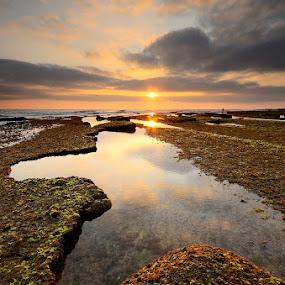 Nature... by Rui Catarino - Landscapes Sunsets & Sunrises