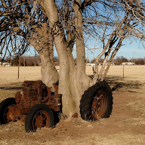 A slow tractor by Karl Jones - Transportation Other (  )