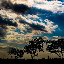 Landscape by Tamil Kumaran - Landscapes Travel ( clouds, blue, weather, trees, landscape )