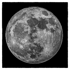 Super moon by Lew Hill - Black & White Landscapes ( blackandwhite, moon, sky, black and white, full moon,  )