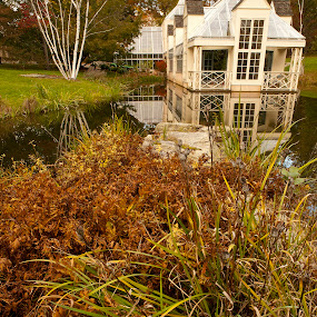 Stonecrop Conservatory by Fran Gallogly - Landscapes Waterscapes ( grasses, birch, building, conservatory, reflection, autumn, greenhouse, pwcreflections, glass, lake, architecture, pond )
