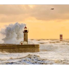 The Yellow Storm by Antonio Marciano - Landscapes Waterscapes ( wave, sea, yellow, storm )