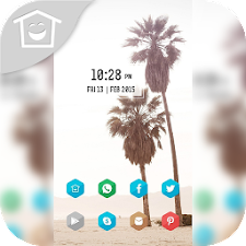 Palm beach theme