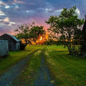 Coucher sur le chemin by Thierry Madère - Novices Only Landscapes ( coucher de soleil, campain, sunset, campagne, rural )