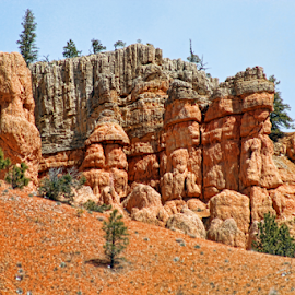 Bryce Canyon by Dipali S - Landscapes Caves & Formations ( cliffs, america, highway, erosion, colorful, vivid, stone, sandstone, rock, road, vibrant, old west, usa, geology, nature, towers, iconic, spiritual, formations, bryce, southwest, ecology, chimney, orange, desert, park, national, canyon, windows, tourism, scenic, stacks, paria, pinnacles, roadway, amazing, landmark )