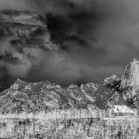 Reka, the mountain by Benny Høynes - Black & White Landscapes ( mountains, black and white, forest, negative, landscape, norway )