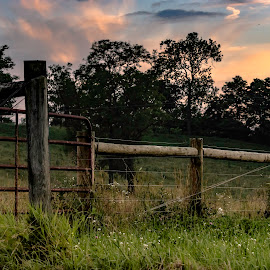 by Jackie Nix - Landscapes Prairies, Meadows & Fields ( countryside, cumulus, wood, colorful, posts, landscape, pretty, farm, pasture, nature, metal, pastoral, cow pasture, light, clouds, high tensile wire, peaceful, beginning, agricultural landscape, grass, calming, beautiful, agriculture, cloudscape, dusk, farming, rural, ending, gate, forages, field, fence, wooden, county, sunset, sundown )