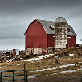 Betsy Come Home  by Michael Priest - Novices Only Landscapes ( farm, wisconsin, winter, landscape )