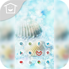 Beautiful shells theme