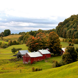 Jenne Farm by Judy Laliberte - Novices Only Landscapes ( clouds, rolling hills, green, trees, red barns )