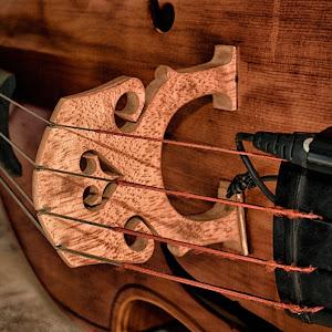 Cello DSC_9952_HDR.jpg