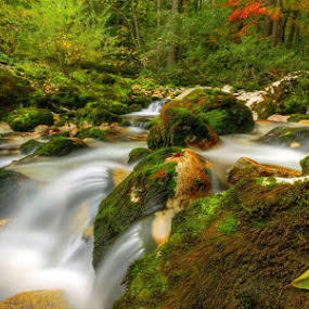 by Boštjan Peterka - Nature Up Close Water