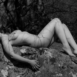 Shadow of Lines by Sean Parker - Nudes & Boudoir Artistic Nude ( art nude, monochrome, nature, black and white, cracked, rocks, shadows )