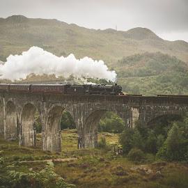 Over the viaduct by Trine Lise Lockertsen - Transportation Trains ( viaduct, glenfinnan, harry potter, scotland, train )