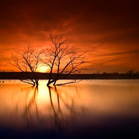 Setting Sun by Ken Smith - Landscapes Sunsets & Sunrises ( sunset, walnut creek, landscape, nebraska )