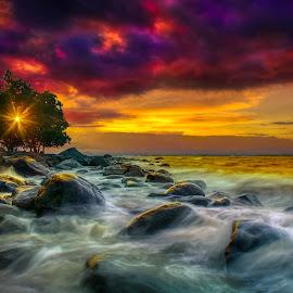Paint My Love by Gilbert Sanchez - Landscapes Beaches