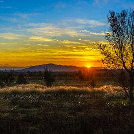 Sunrise with the Pico de Orizaba by Cristobal Garciaferro Rubio - Landscapes Prairies, Meadows & Fields