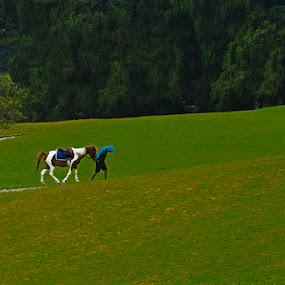 walking together by Basuki Mangkusudharma - Landscapes Mountains & Hills ( walking )