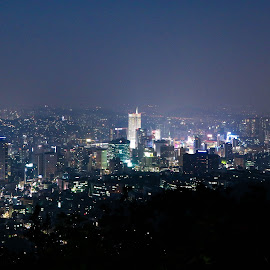 Seoul by Nicodemus Santoso - Novices Only Landscapes ( city scape, building, seoul, south korea )