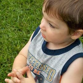 My boy by Nicole Nicolodi - Babies & Children Toddlers ( KidsOfSummer )