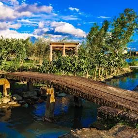 Bridge by Jay Chen - Buildings & Architecture Bridges & Suspended Structures ( pwcbridges )