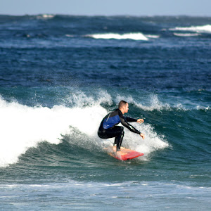 Blue Trim Surfer Low.jpg