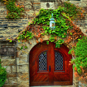 Doorway by Jim Davis - Buildings & Architecture Other Exteriors ( doors, landmark, vines, glass, stone building, stone, windows, historical )